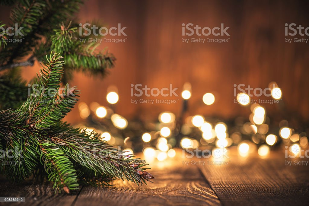 Spruce Tree branch on Wood Background stock photo