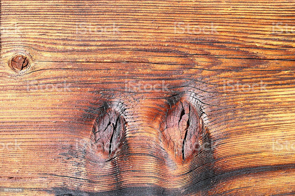 spruce wood textured detail royalty-free stock photo