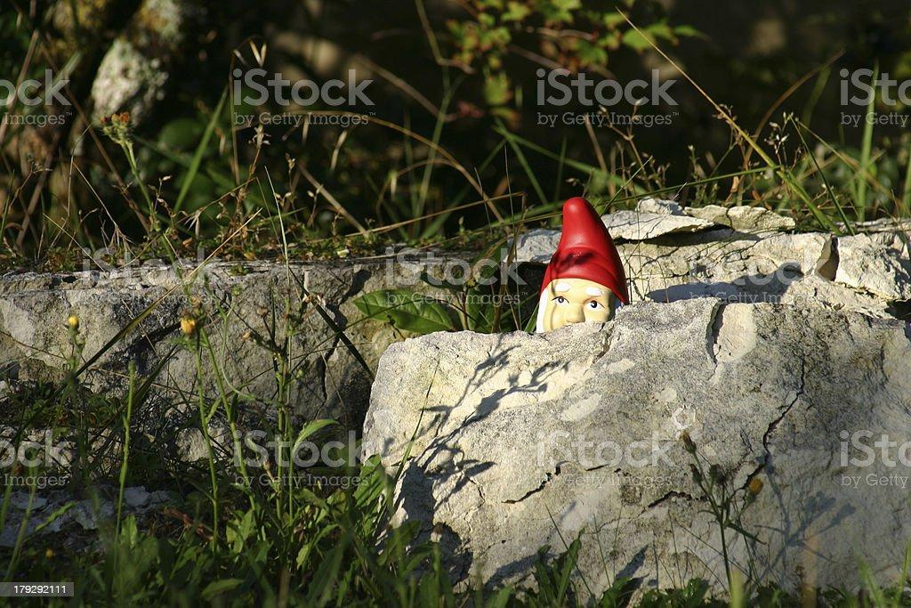 Spy in a garden stock photo