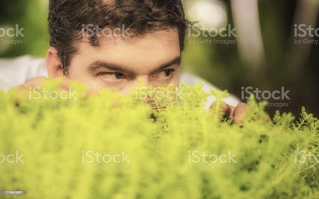 Spying on neighbors stock photo