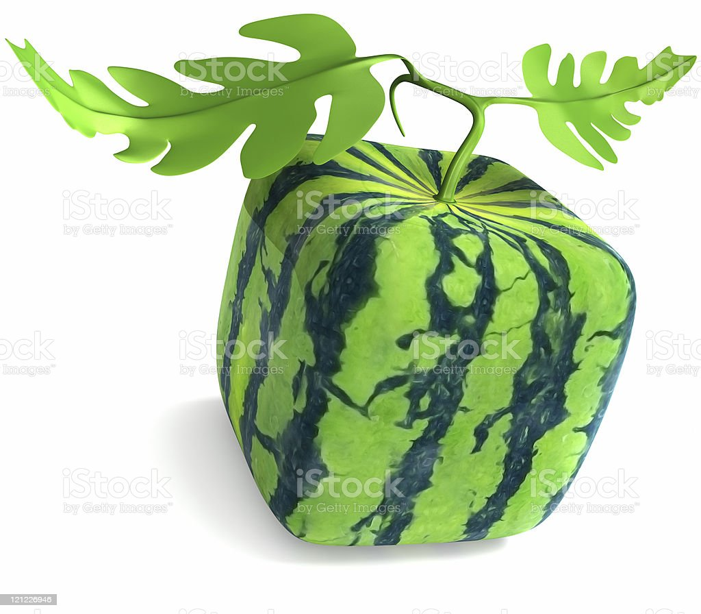 Square  watermelon royalty-free stock photo