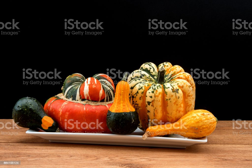 Squash and gourds against a black background. royalty-free stock photo