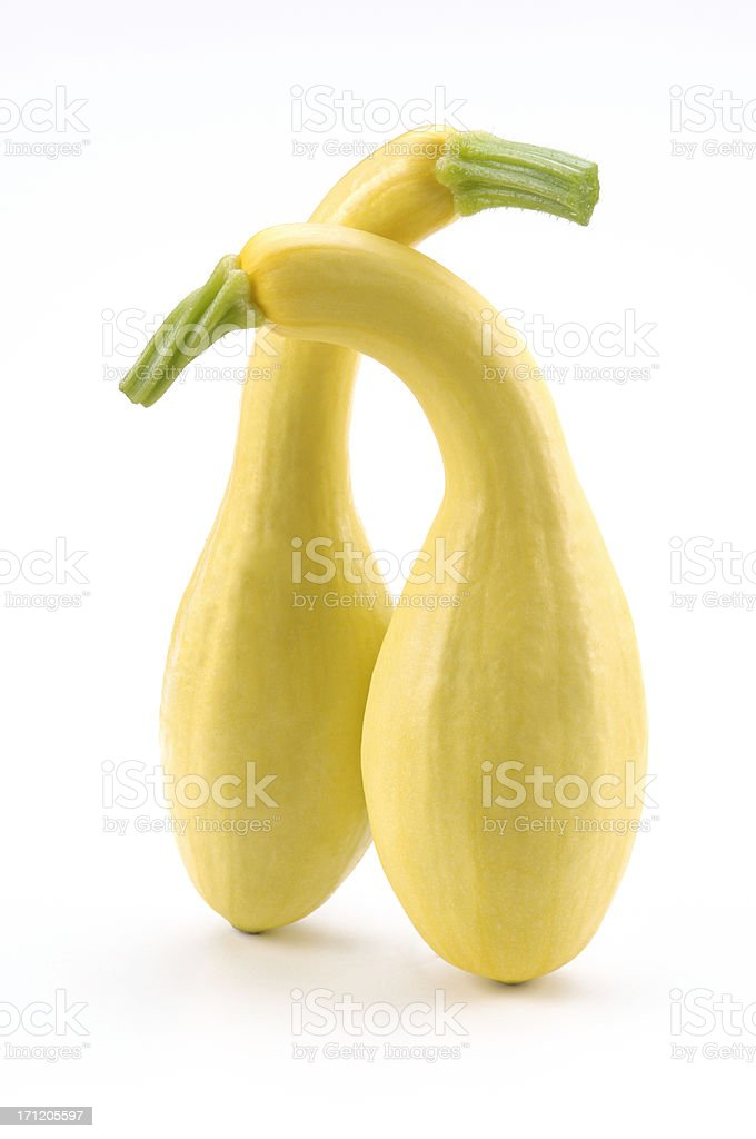 Squash Lovers stock photo
