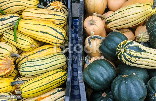 Crates of delicata, butternut and acorn squash at a Vermont Farmers market