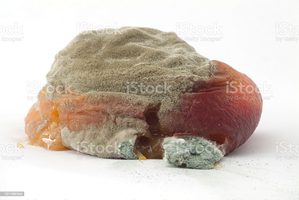 Squashed Rotten Peach royalty-free stock photo