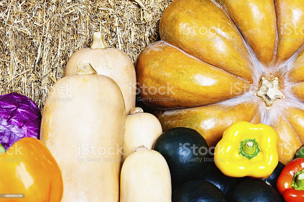 Squashes including pumpkin, gem, and butternut with other vegetables royalty-free stock photo