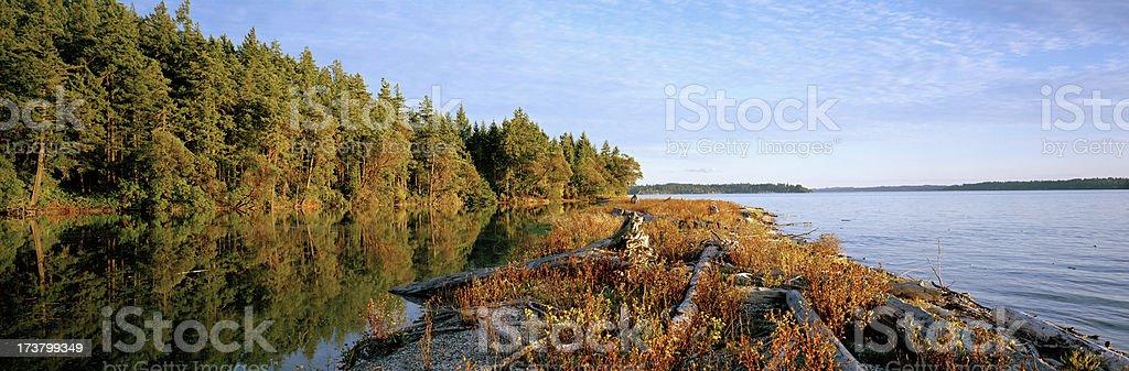Squaxin Shoreline , Puget Sound, Washington, United States royalty-free stock photo
