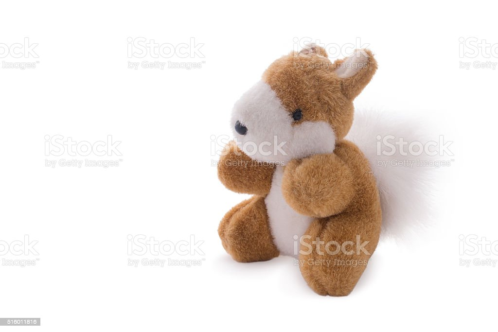Squirrel toy doll isolated over white. stock photo