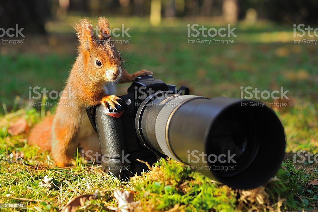 Gewöhnlicher mit großen professionellen Kamera – Foto