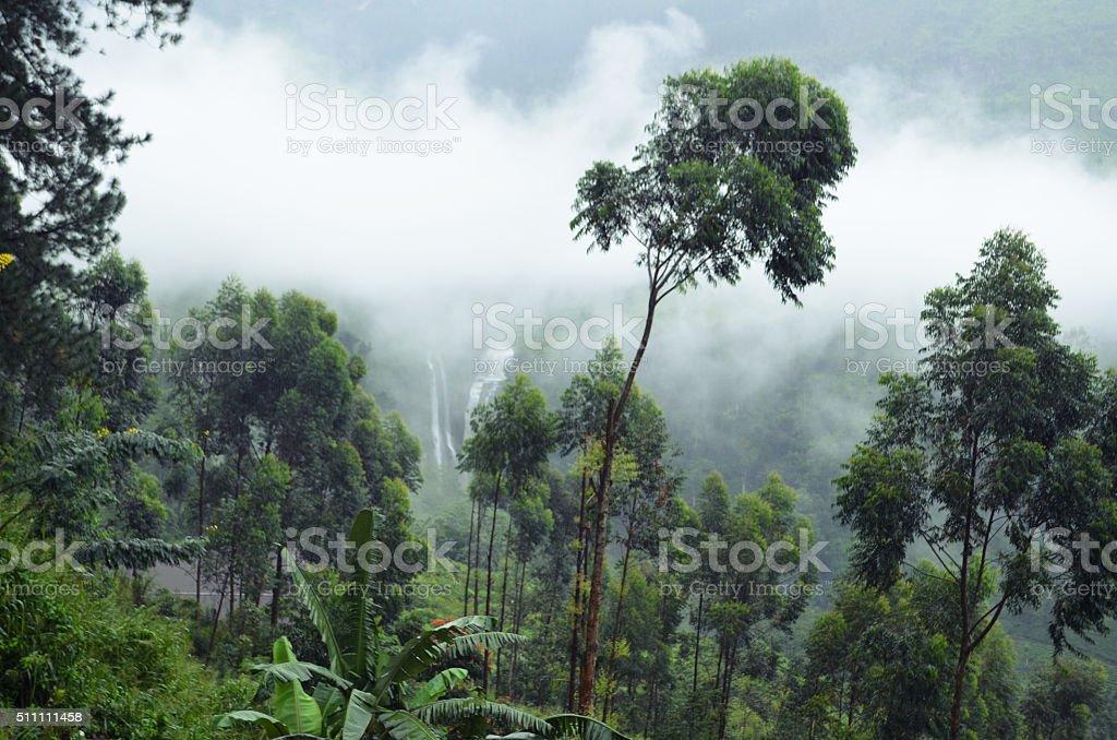 Sri Lanka Mountains stock photo