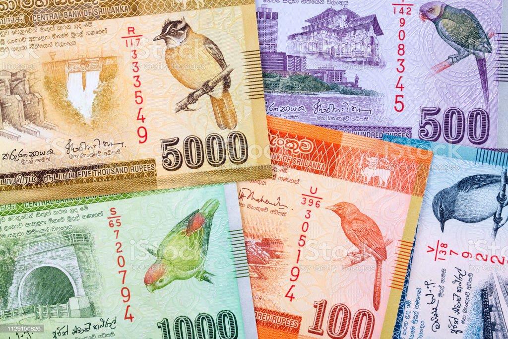 スリランカ スリランカ ルピー背景 - インド通貨のストックフォトや ...