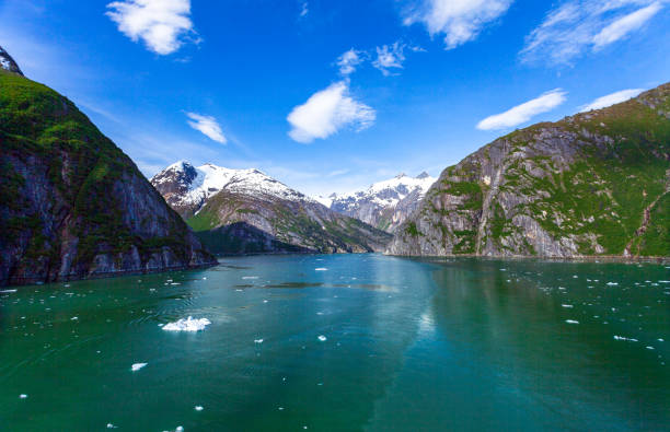 SSailing toward the Tracy Arm Fjord we see Alaskan Snowcapped Mountains overlooking a lush Forest and beautiful lake.