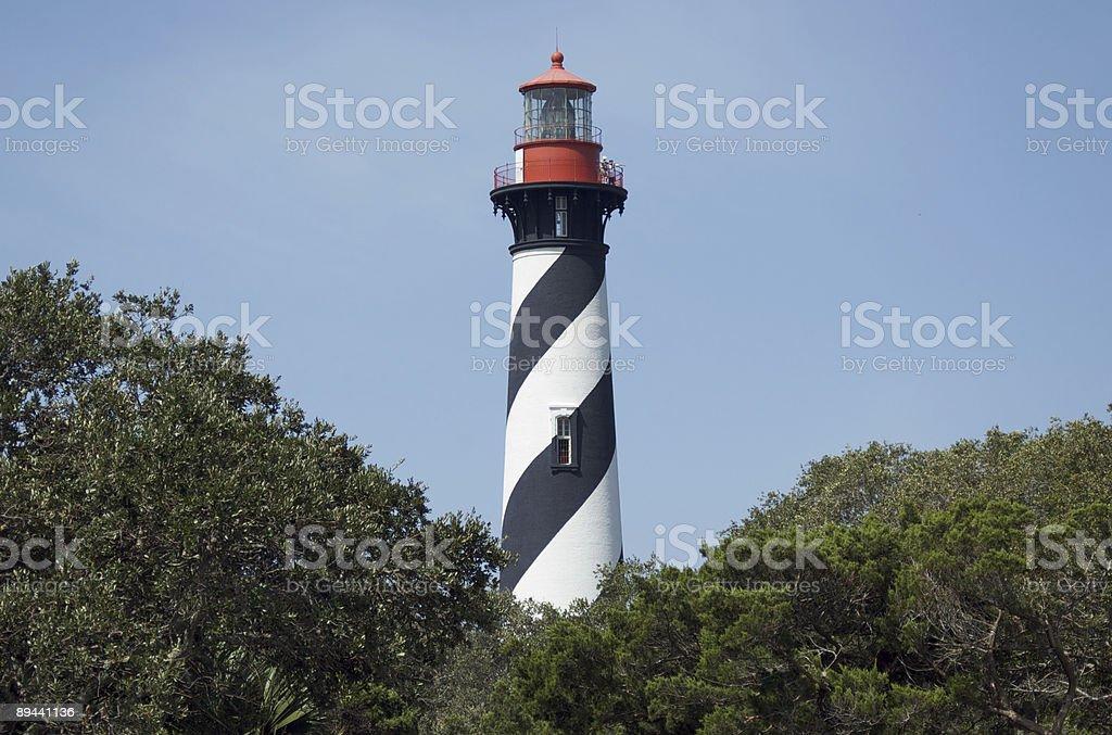 St. Augustine Lighthouse Landscape royaltyfri bildbanksbilder