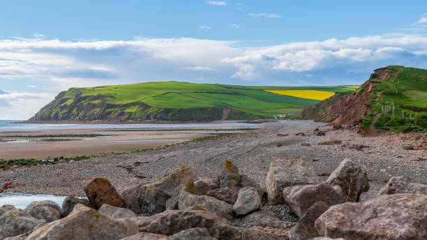 St Bees, Cumbria, England The beach and cliffs in St Bees near Whitehaven, Cumbria, England, UK cumbria stock pictures, royalty-free photos & images