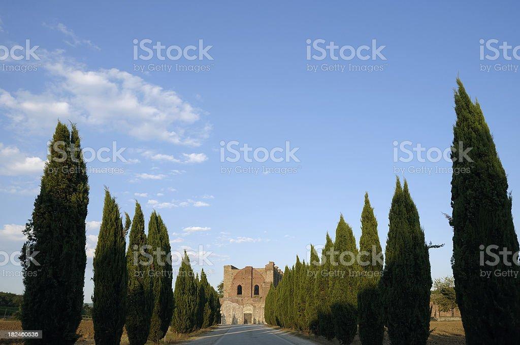 Abadía de San Galgano foto de stock libre de derechos