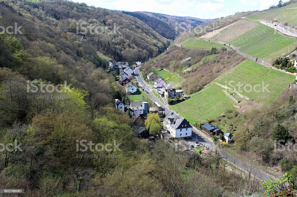St. Goar, Germany hillside stock photo