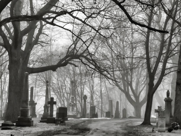 st. james cemetery in the fog, toronto, canada - cemetery stock photos and pictures