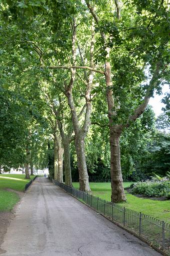 세인트 제임스 공원 Central London에 대한 스톡 사진 및 기타 이미지