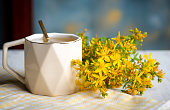 St. John's wort flower herbal tea in a white cup closeup