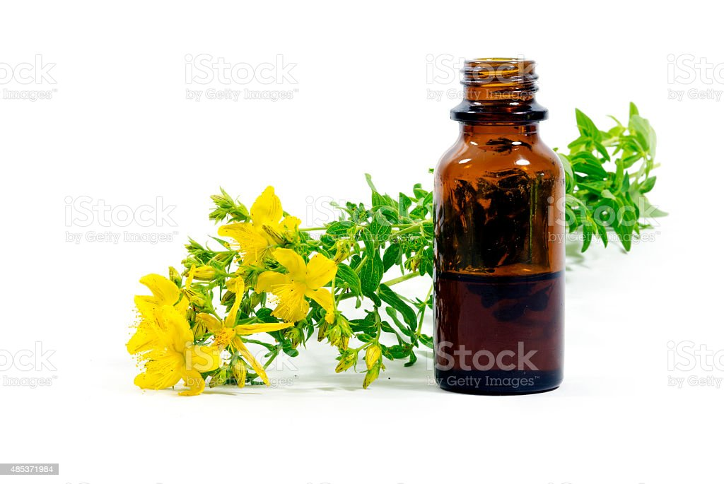 St. John's wort, Hypericum perforatum, and a bottle with extract stock photo