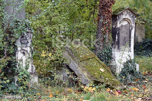 A derelict tombstone in the Sankt Marx cemetery in Vienna, which was closed in 1874 and is a listed building