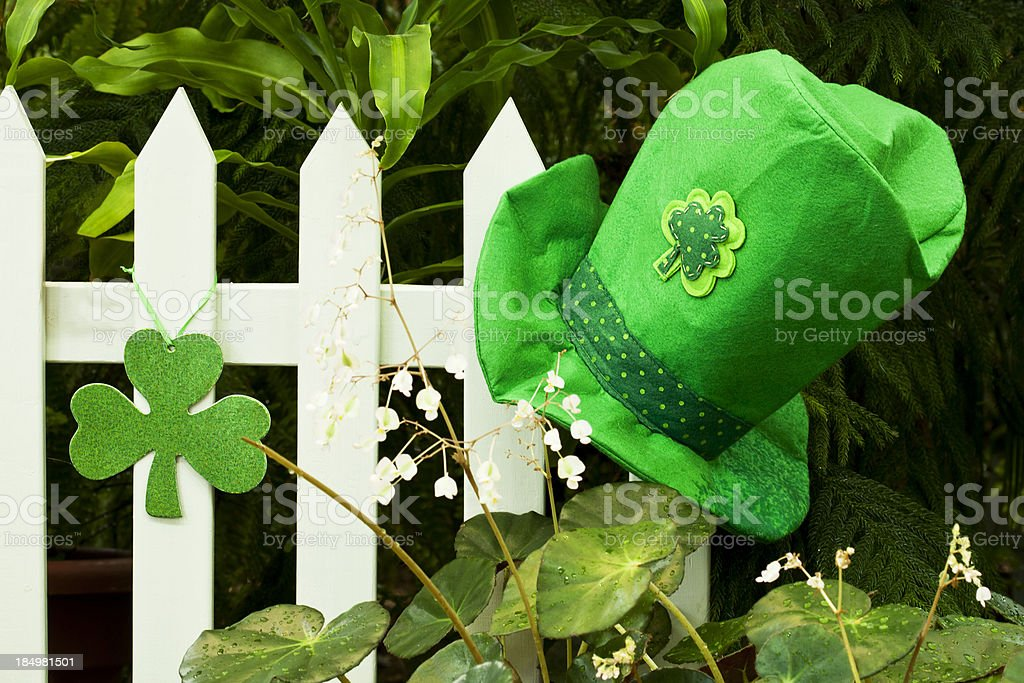 St. Paddy's Day stock photo