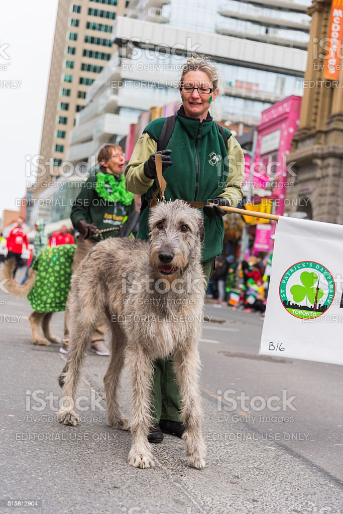 St. Patrick's Day Parade in Toronto stock photo