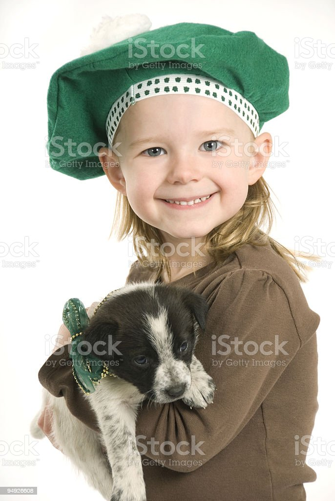 St. Patrick's Day Puppy royalty-free stock photo