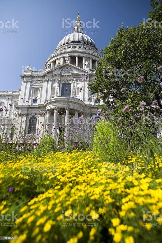 St Pauls Cathedral und garden, London Lizenzfreies stock-foto