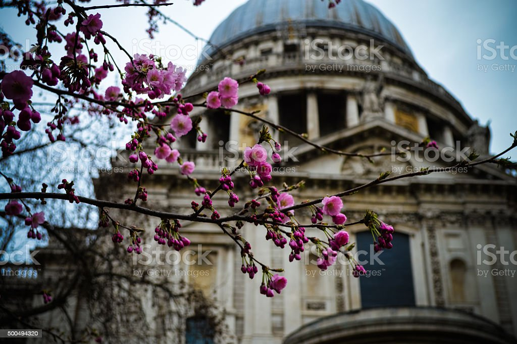 St. Paul's Cathedral - London, UK stock photo