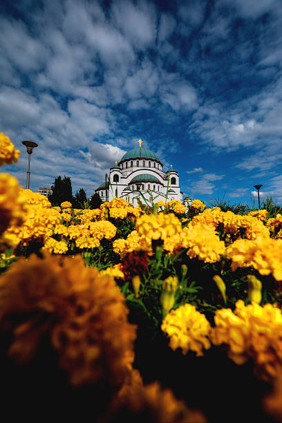 st. sava cathedral - belgrade serbia stock photos and pictures