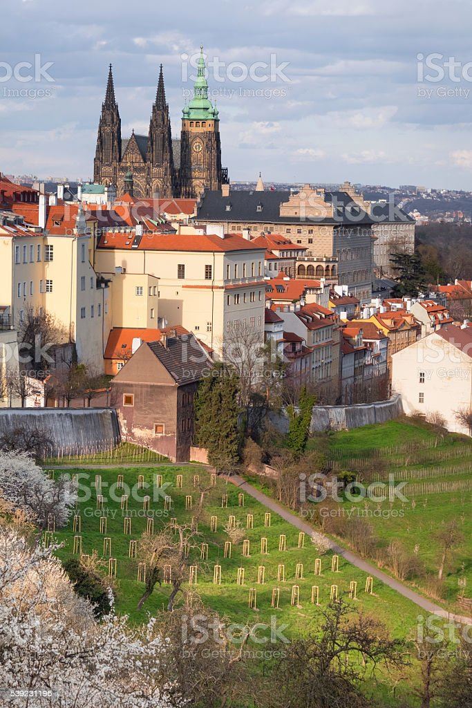 St. Vitus cathedral and roofs of Old Prague royalty-free stock photo
