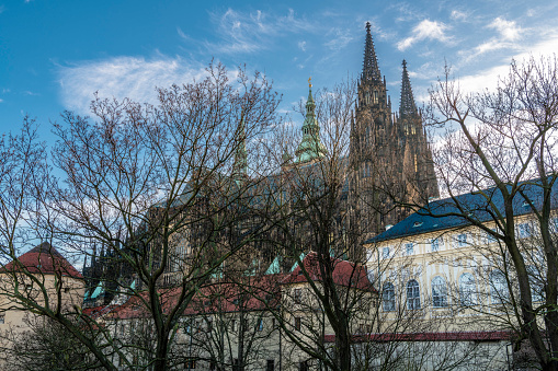 St. Vitus Cathedral is hidden behind the bare trees