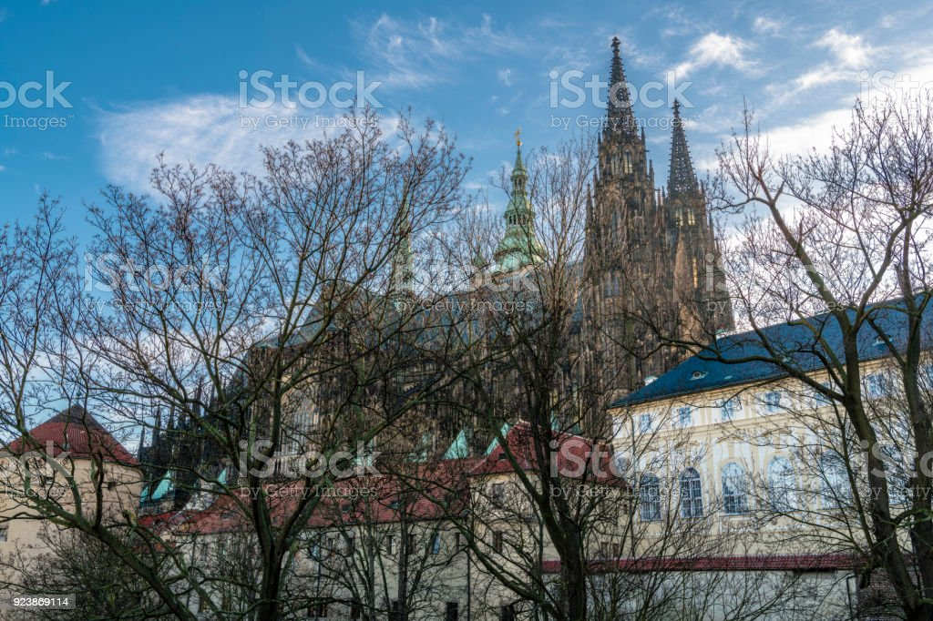 St. Vitus Cathedral is hidden behind the bare trees stock photo