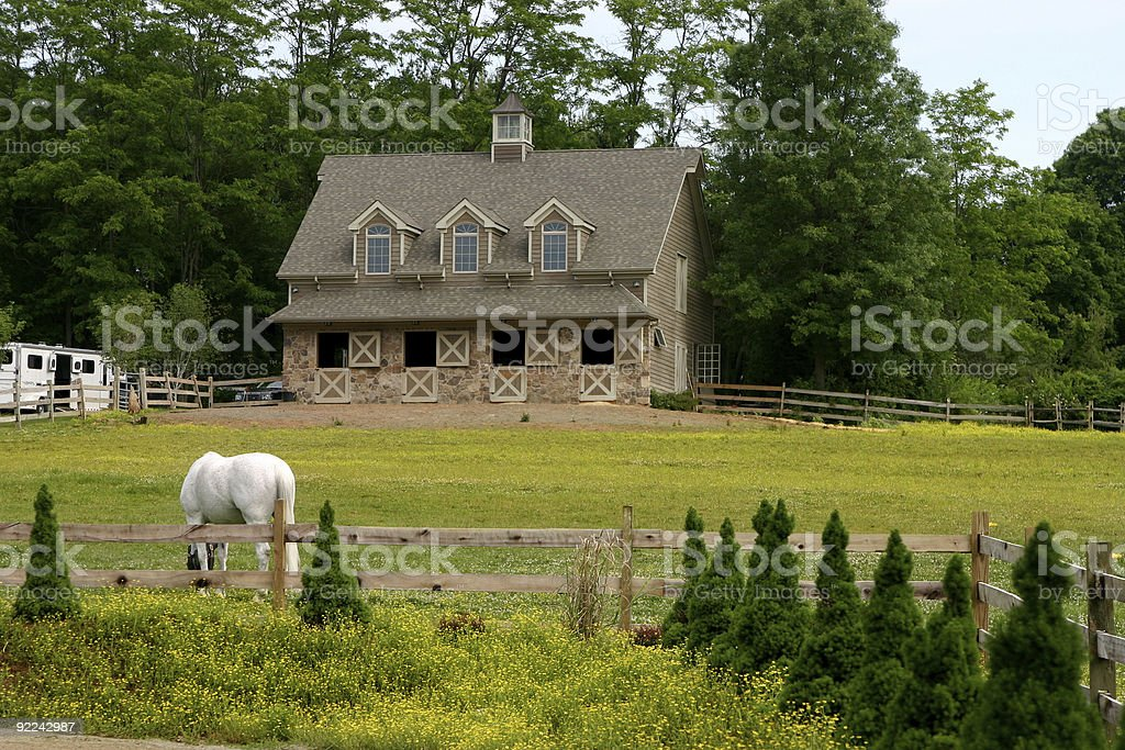 Stable royalty-free stock photo
