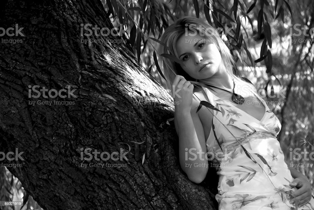 Stacia laying on the Tree royalty-free stock photo