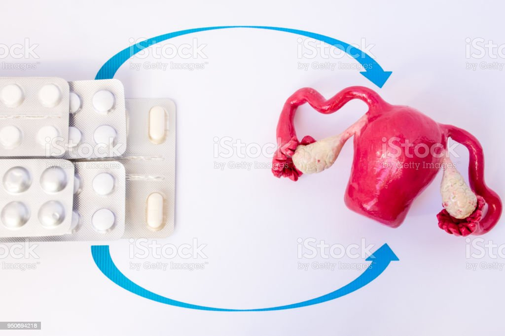 Stack blisters with pills and capsules inside pointed arrows on model of uterus with ovaries. Concept photo of hormone replacement therapy in gynecology at menopause, climax, removed ovaries stock photo