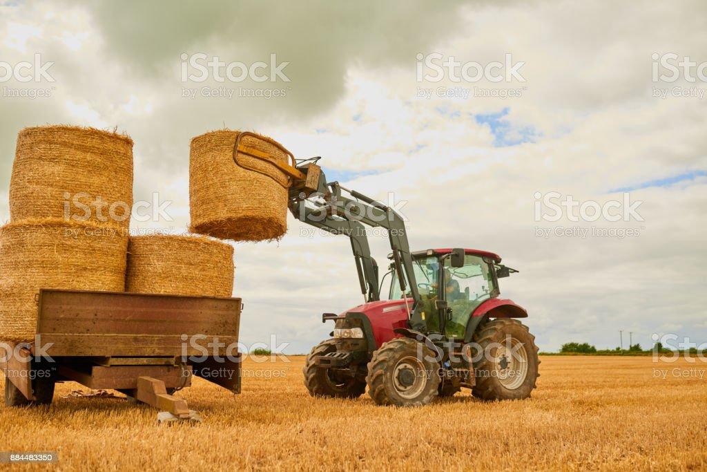 Stack 'em up stock photo