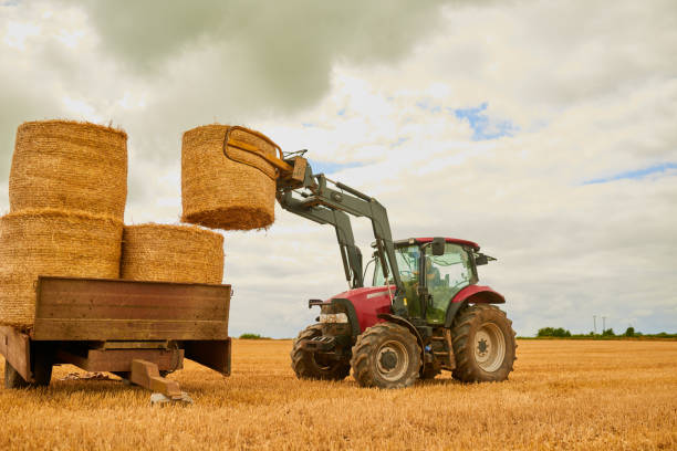 Stack 'em up Shot of a farmer stacking hale bales with a tractor on his farm agricultural machinery stock pictures, royalty-free photos & images