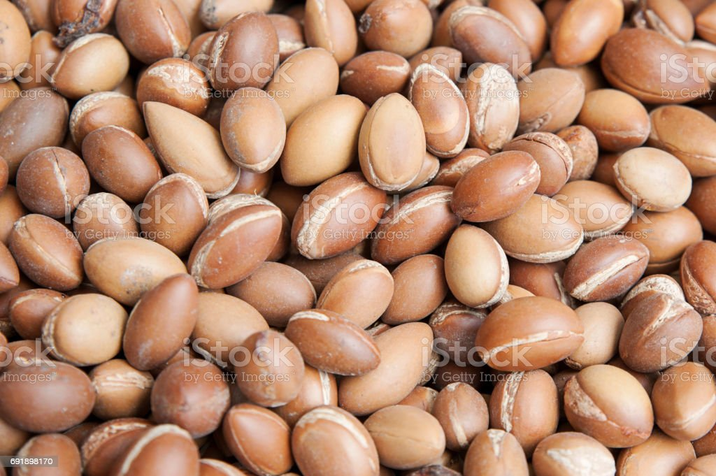 Stack of argan fruit at the local Moroccan markets, Marrakesh, Morocco stock photo