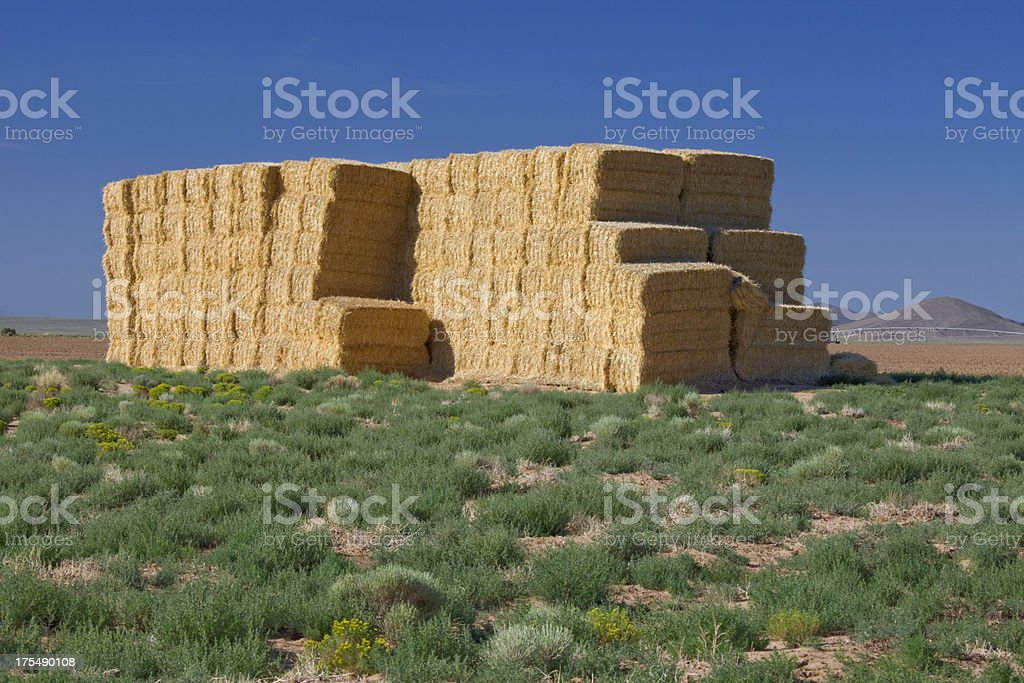 Stack of baled hay in Colorado's San Luis Valley stock photo