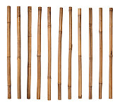 Stack of bamboo sticks lined up side by side