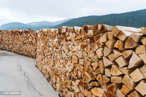 Stack of chopped beech firewood prepared for sale, forest in background