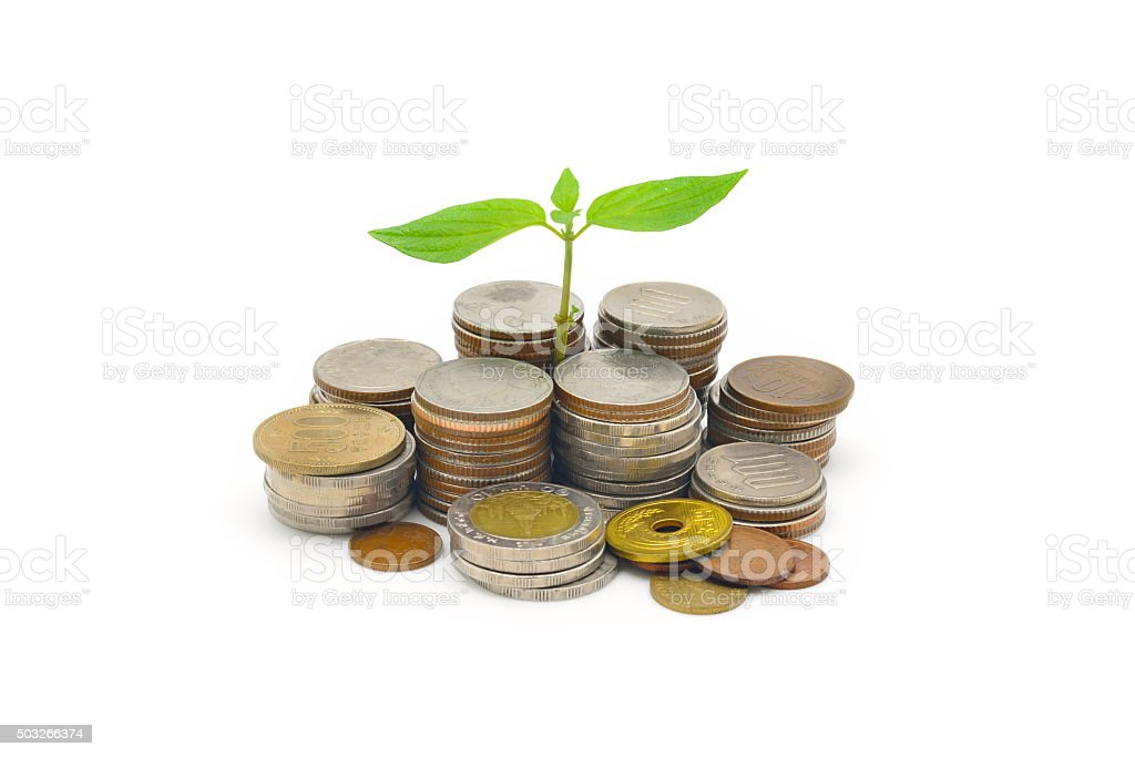 stack of coins with growing sprout isolated on white background stock photo