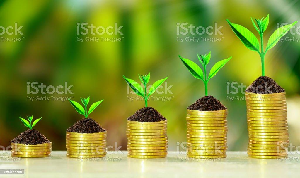 Stapel von Münzen mit Wachstum sprießen Pflanzen – Foto