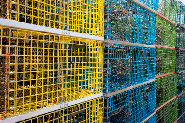 Stack of colorful lobster traps on the pier stock photo