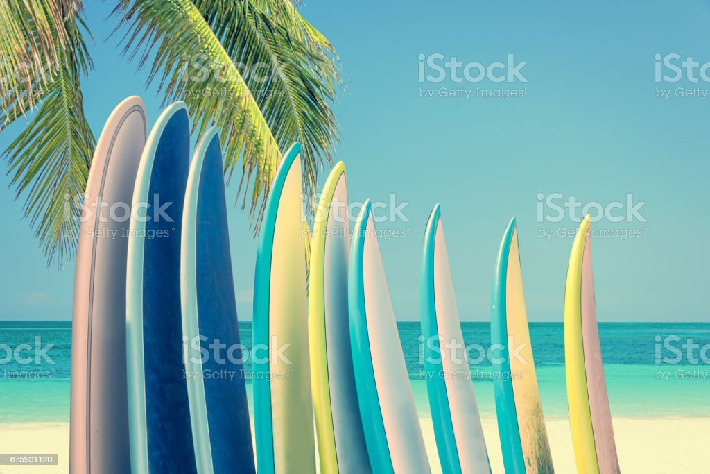 Stack of colorful surfboards on a tropical beach by the ocean with palm tree, retro vintage filter stock photo