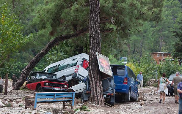 stapel gecrasht autos in the woods - chevy van stock-fotos und bilder