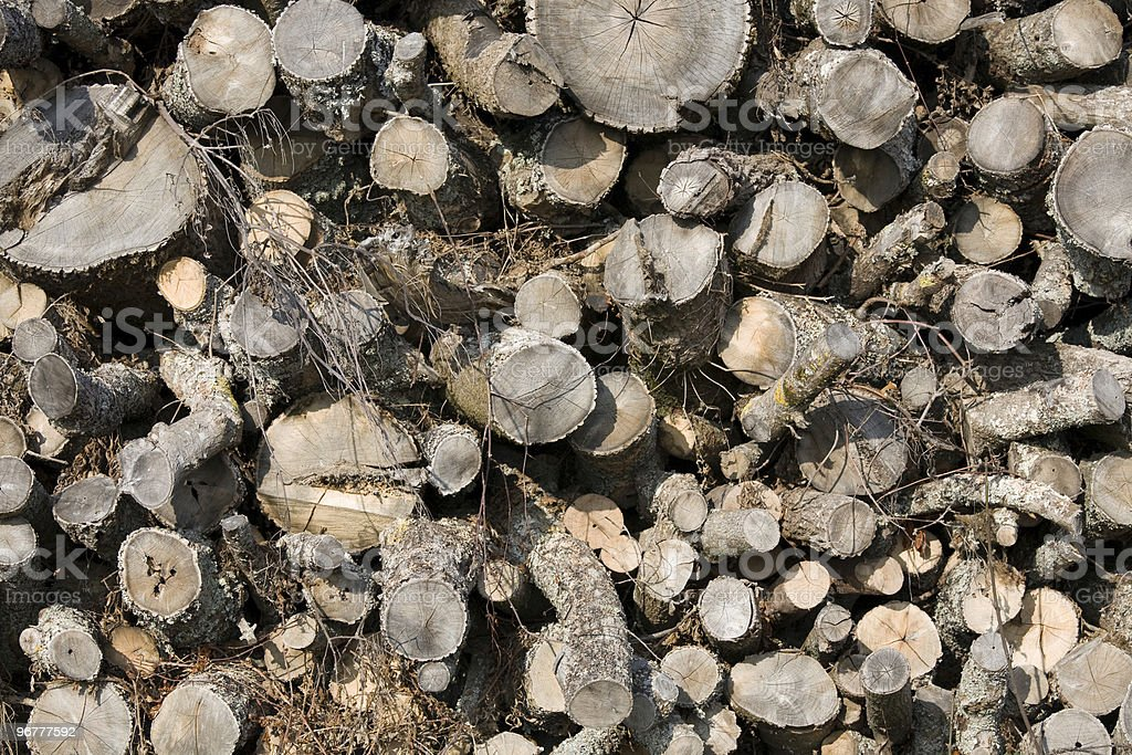 Stack of cut trees royalty-free stock photo