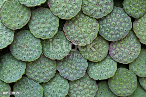 Close-up on a stack of fresh lotus seed pods for sale on a market's stall.